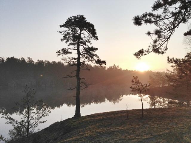 Soluppgång vid sjön