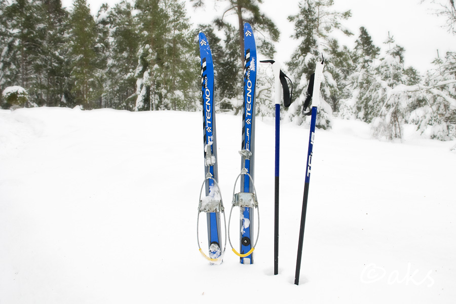 sport skidor