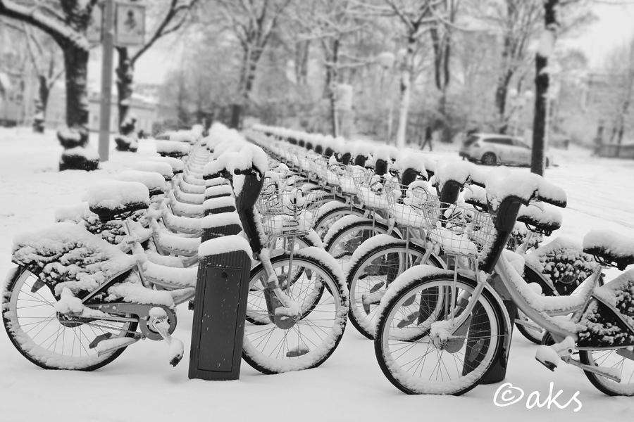 vinter på djurgården
